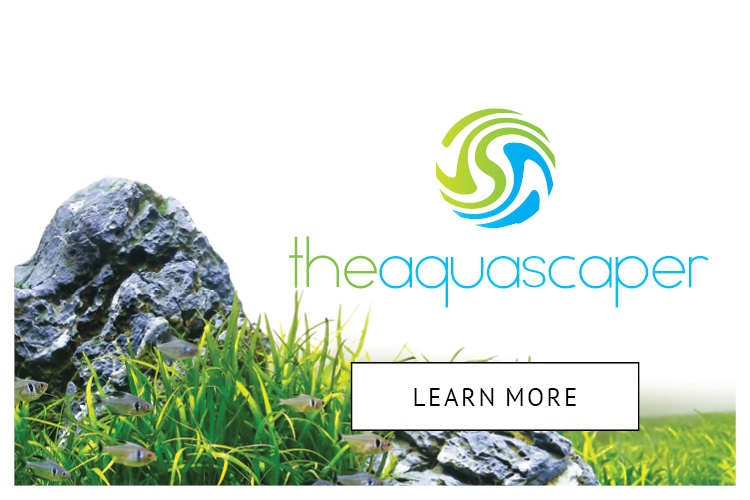 The Aquascaper