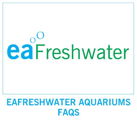 FAQS Aquariums