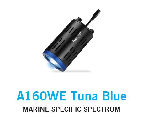 Kessil A160 Tuna Blue