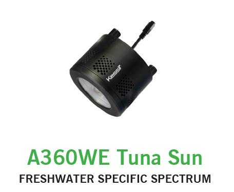 Kessil 360 Tuna Sun