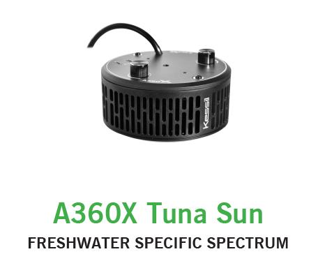Kessil 360X Tuna Sun