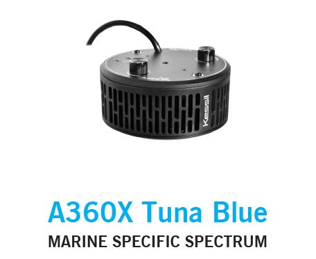 Kessil 360X Tuna Blue