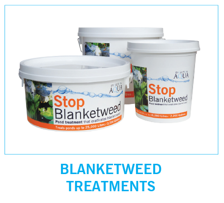 EA Blanketweed
