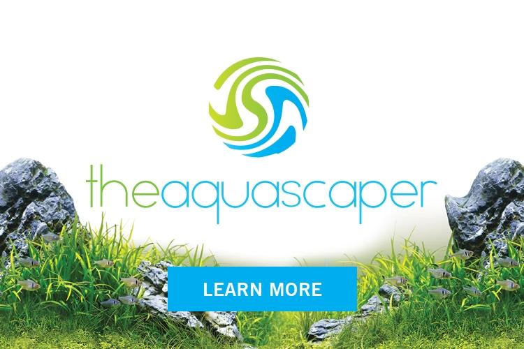 theaquascaper