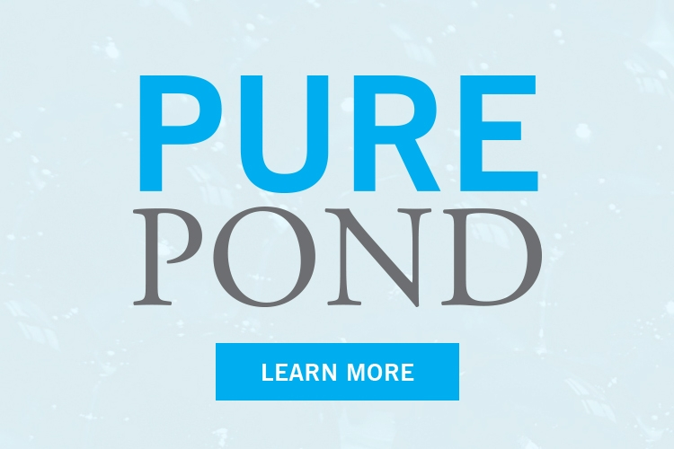 PurePond